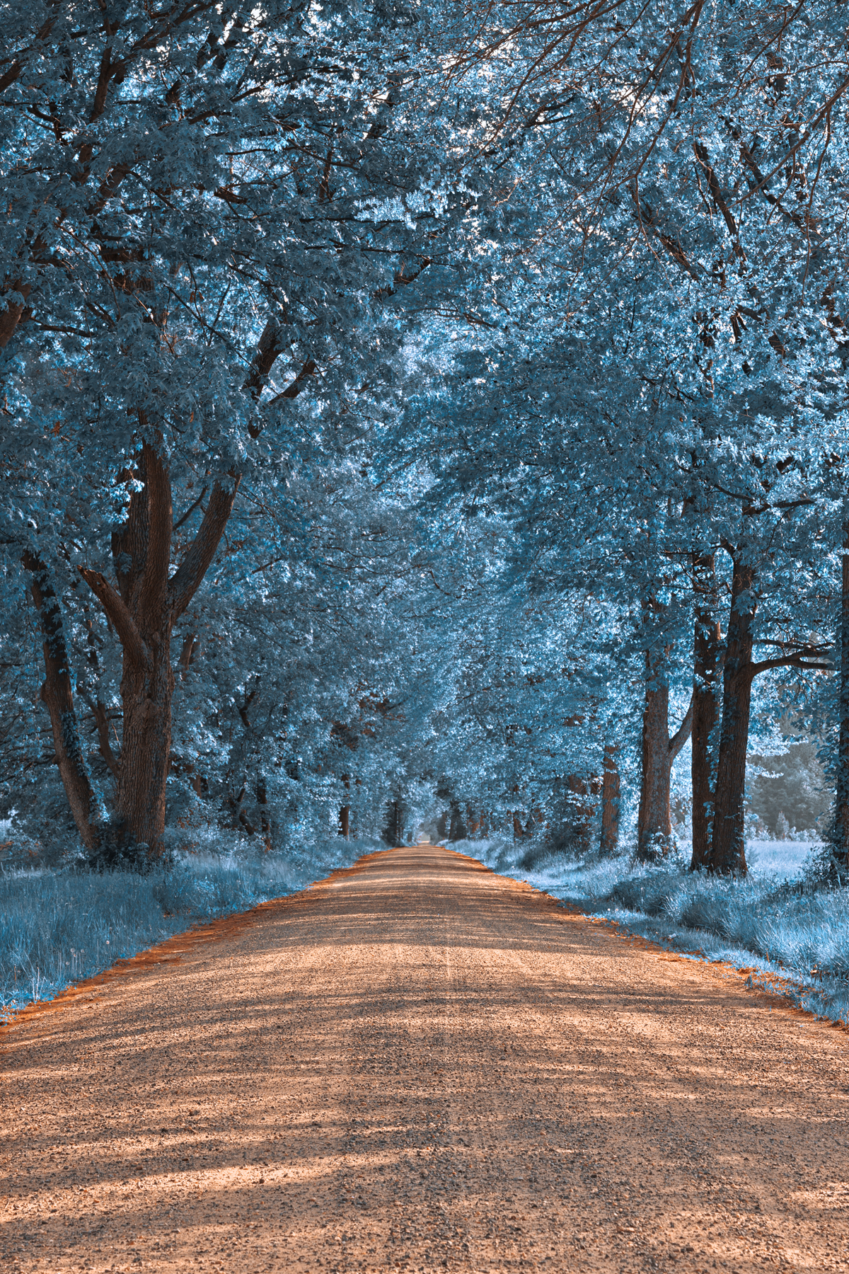 Wye Island Sapphire Road - HDR, America, States, Spectacular, Somadjinn, HQ Photo