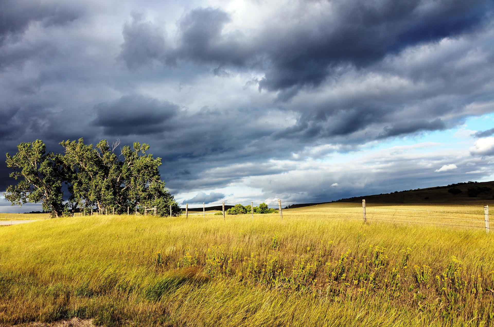 Wyoming, Agricultural, Agriculture, Cloudy, Field, HQ Photo