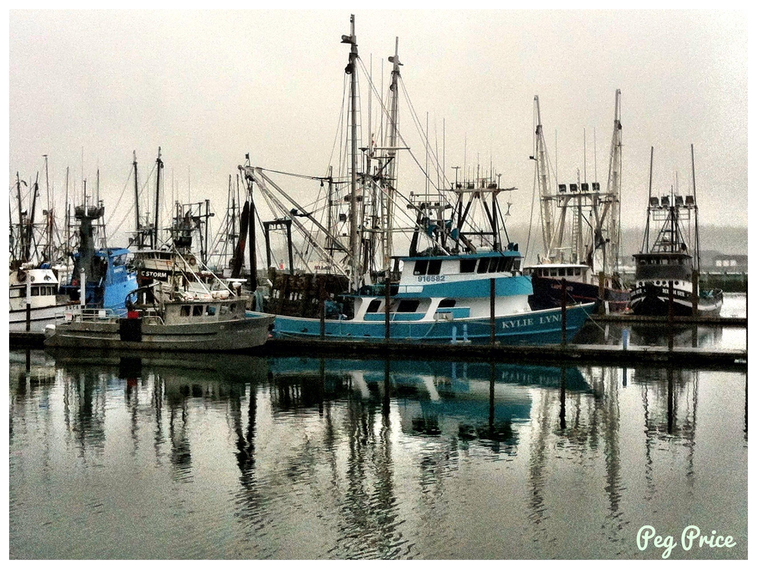 Yaquina Bay in Newport, Oregon   Newport Oregon   Pinterest ...