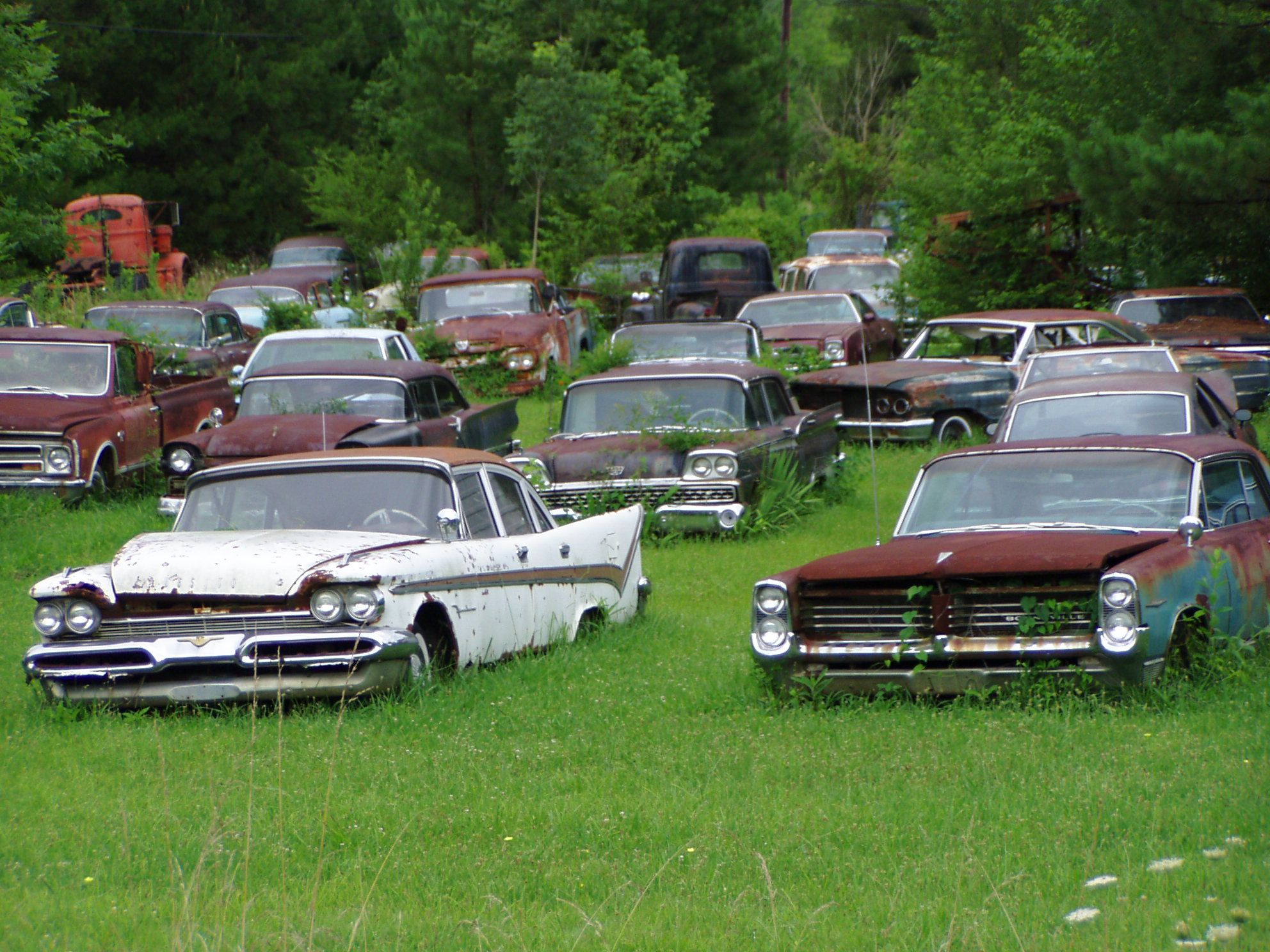 junk yard cars - Yahoo Canada Image Search Results | Forgotten Cars ...