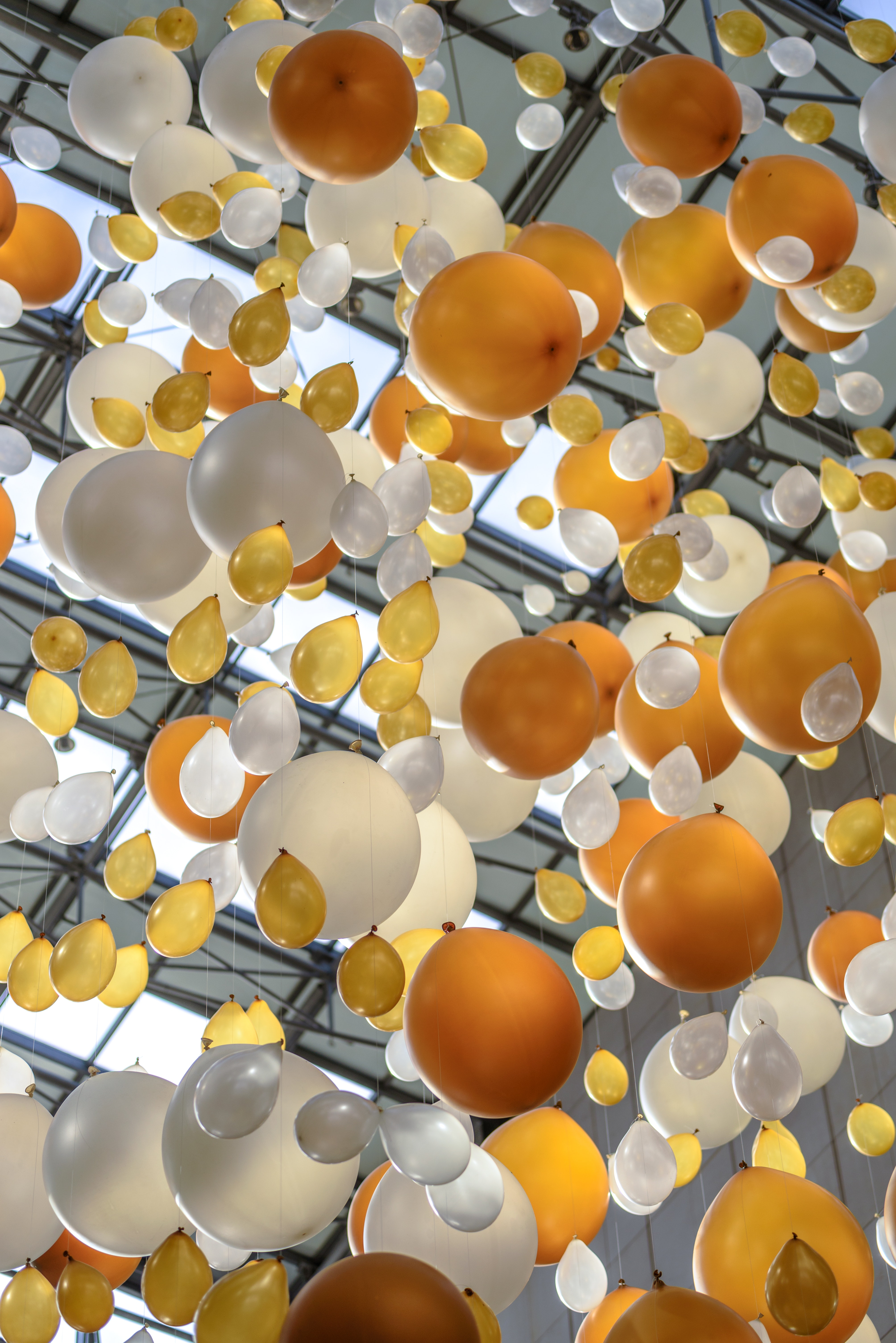 Yellow Balloon Beside White Balloon, Art, Balloons, Birthday, Bright, HQ Photo