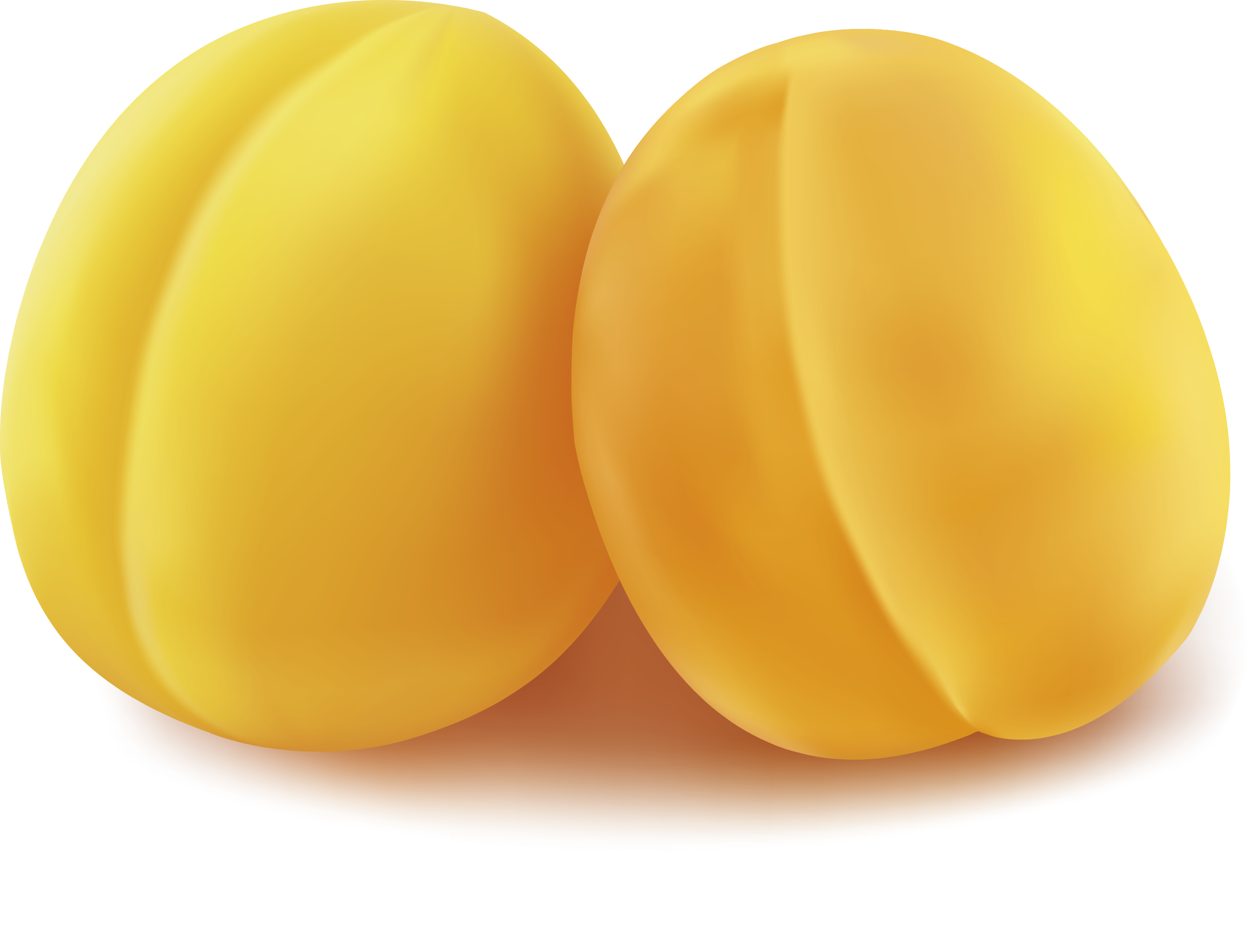 Yellow Commodity Fruit - Peach vector 2986*2272 transprent Png Free ...