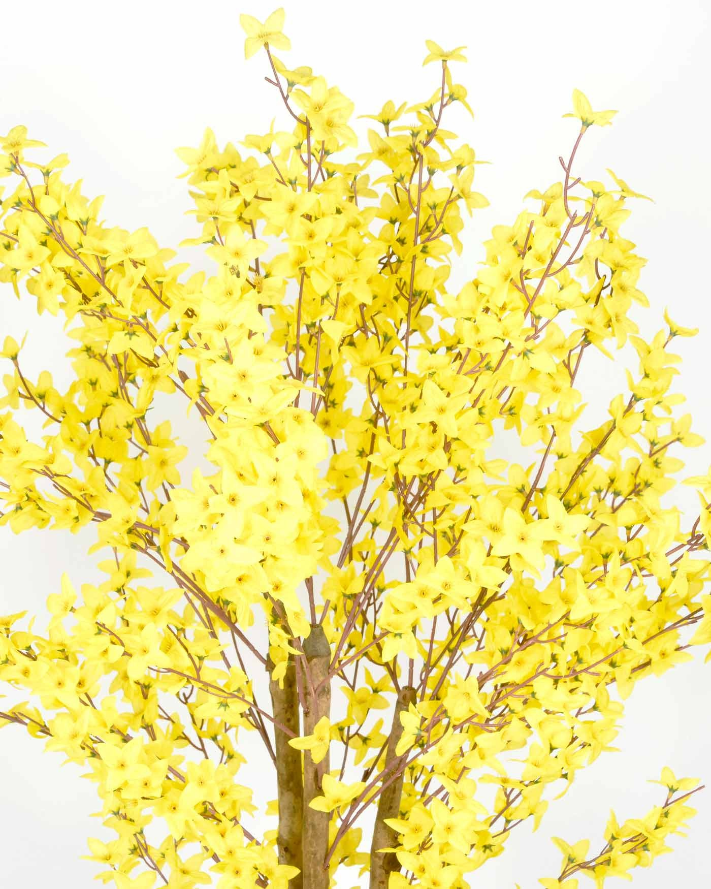 Free photo yellow fake flowers orange yellow flowers free yellow fake flowers mightylinksfo