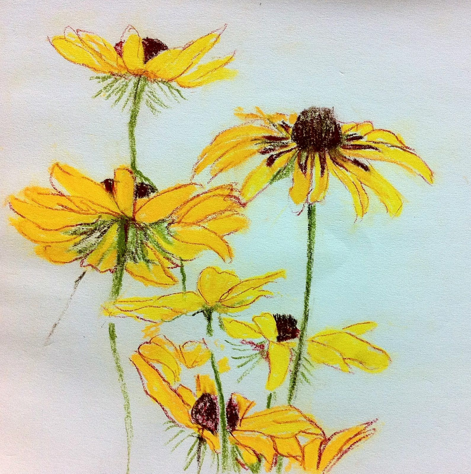 Free Photo Yellow Flowers Sketch Yellow Painting Drawing Free