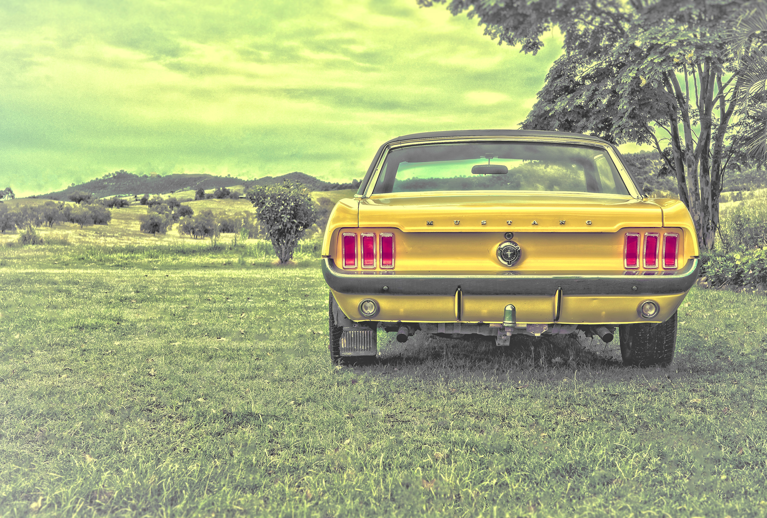 Yellow ford mustang - vintage car photo