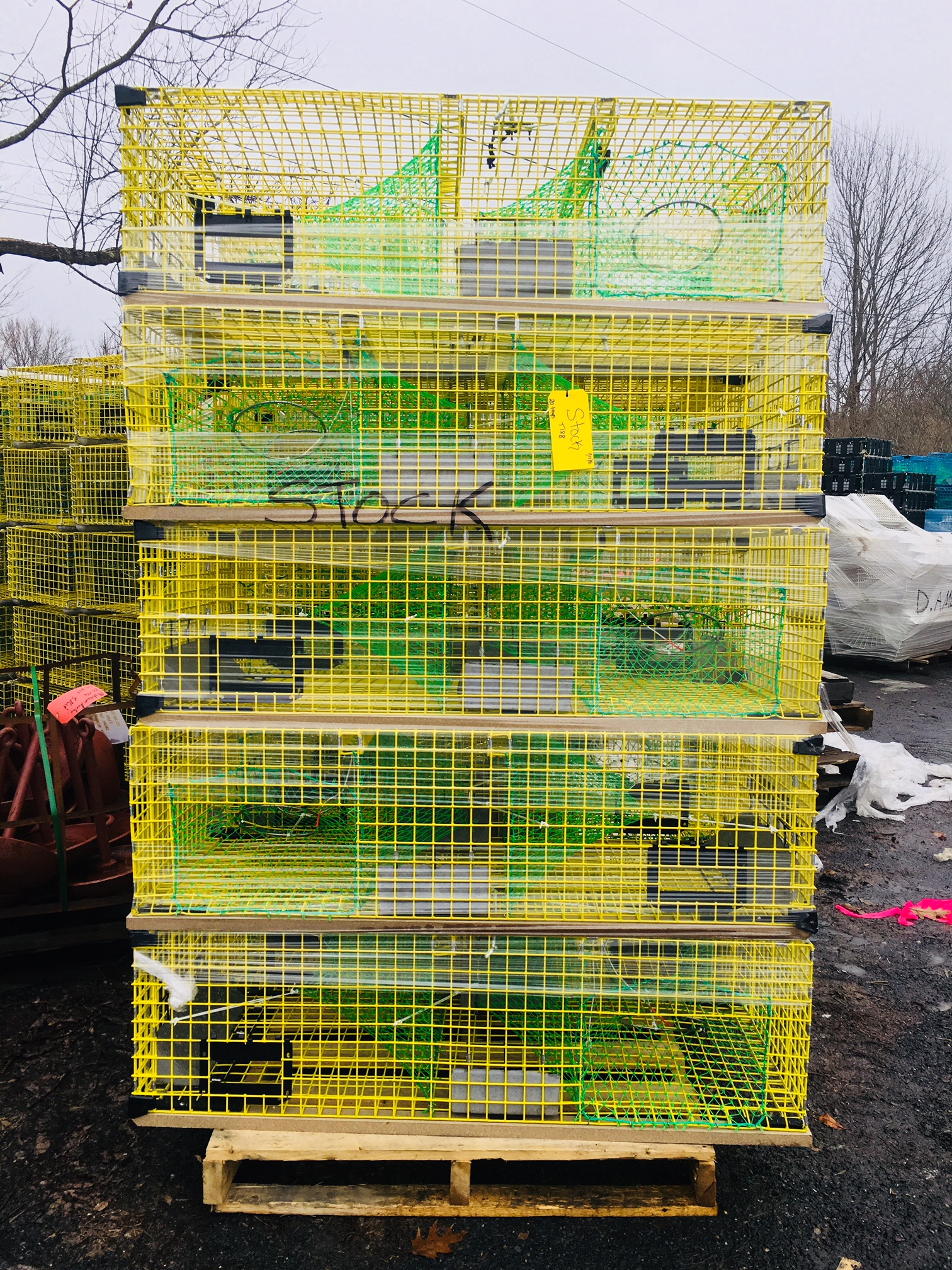 Yellow lobster traps photo