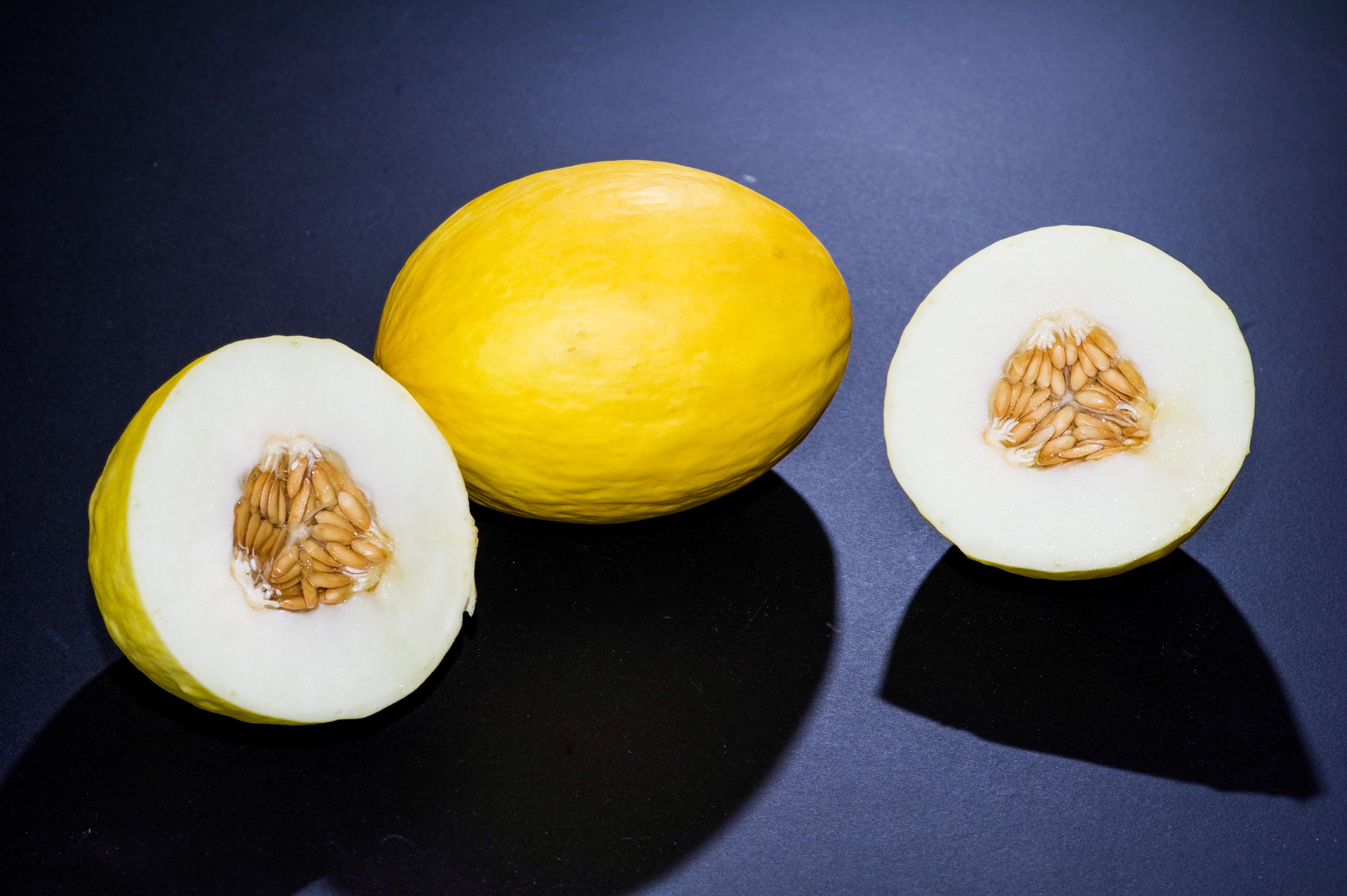 Canary melon - Wikipedia