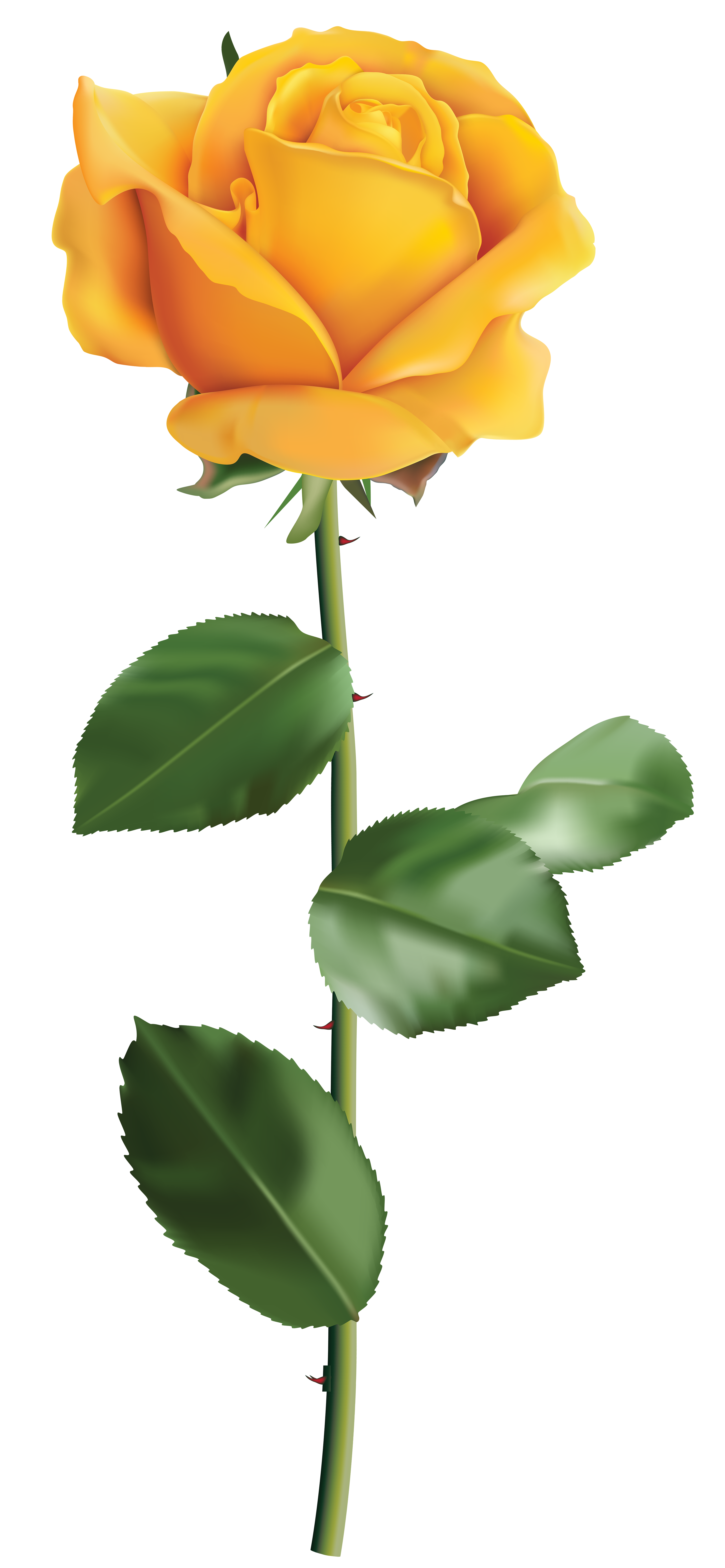 Yellow Rose Transparent PNG Clip Art Image | Gallery Yopriceville ...
