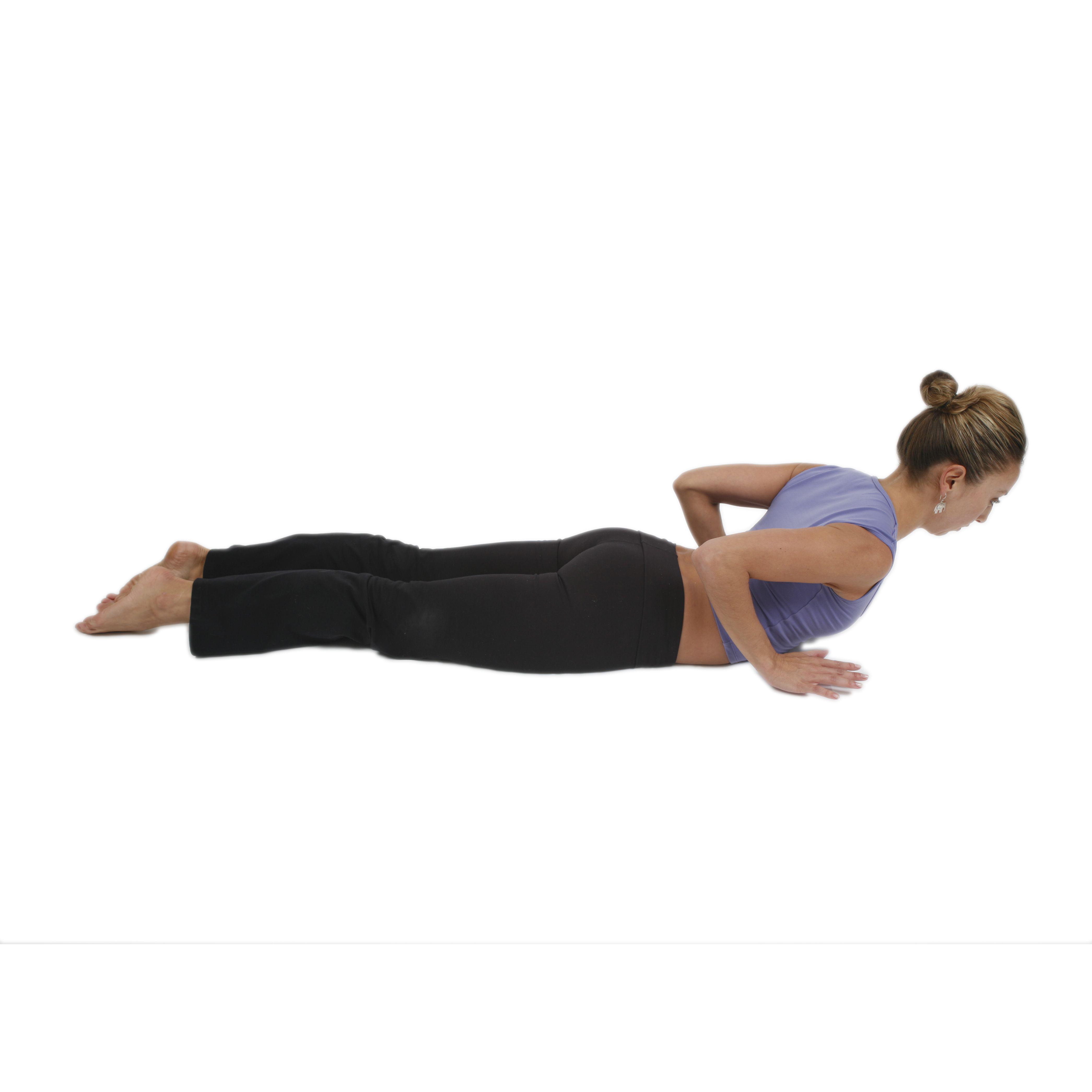 YogaDownload - Online Yoga Pose Guide