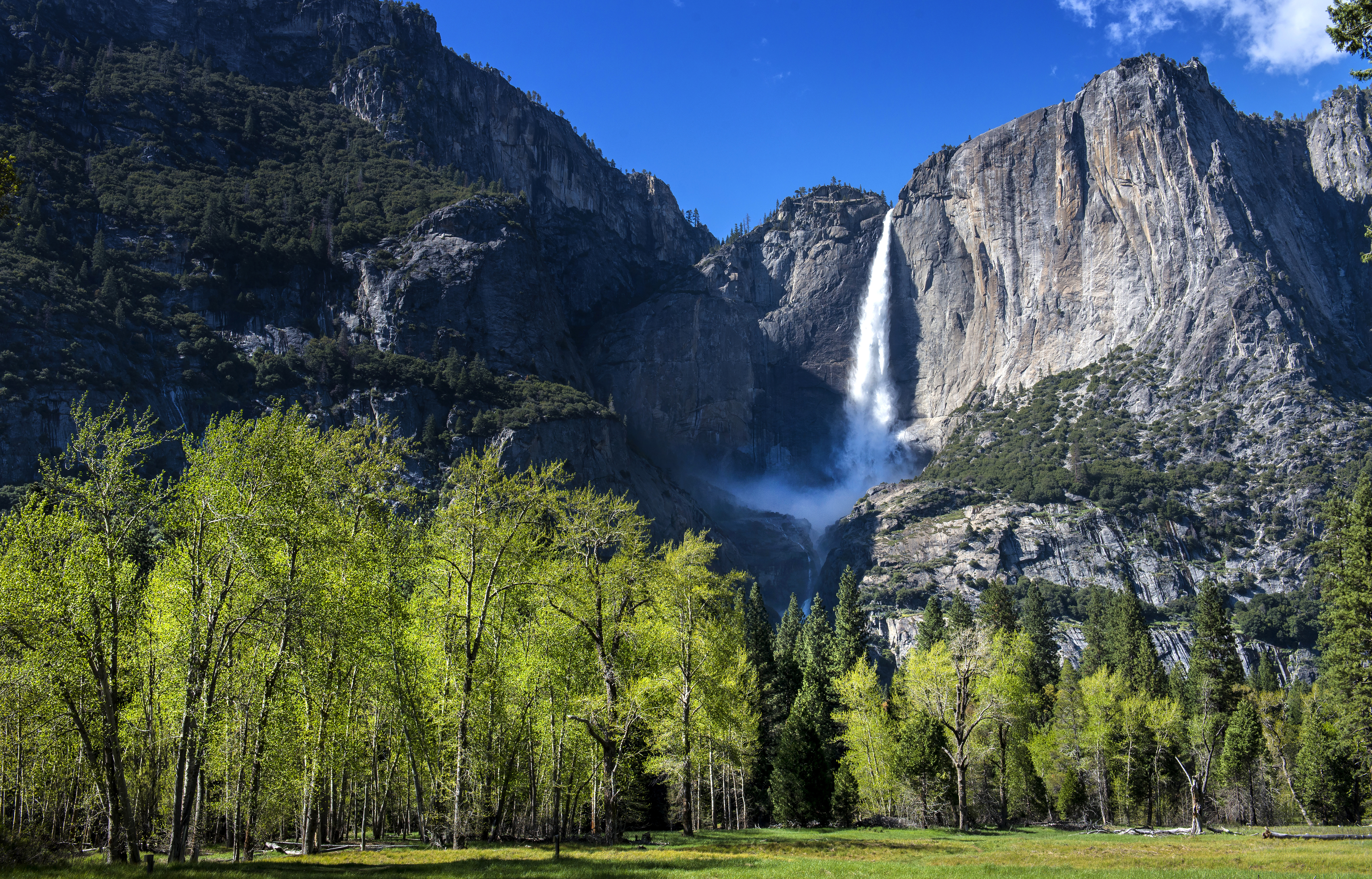 After a rainy winter, Yosemite National Park springs to life ...