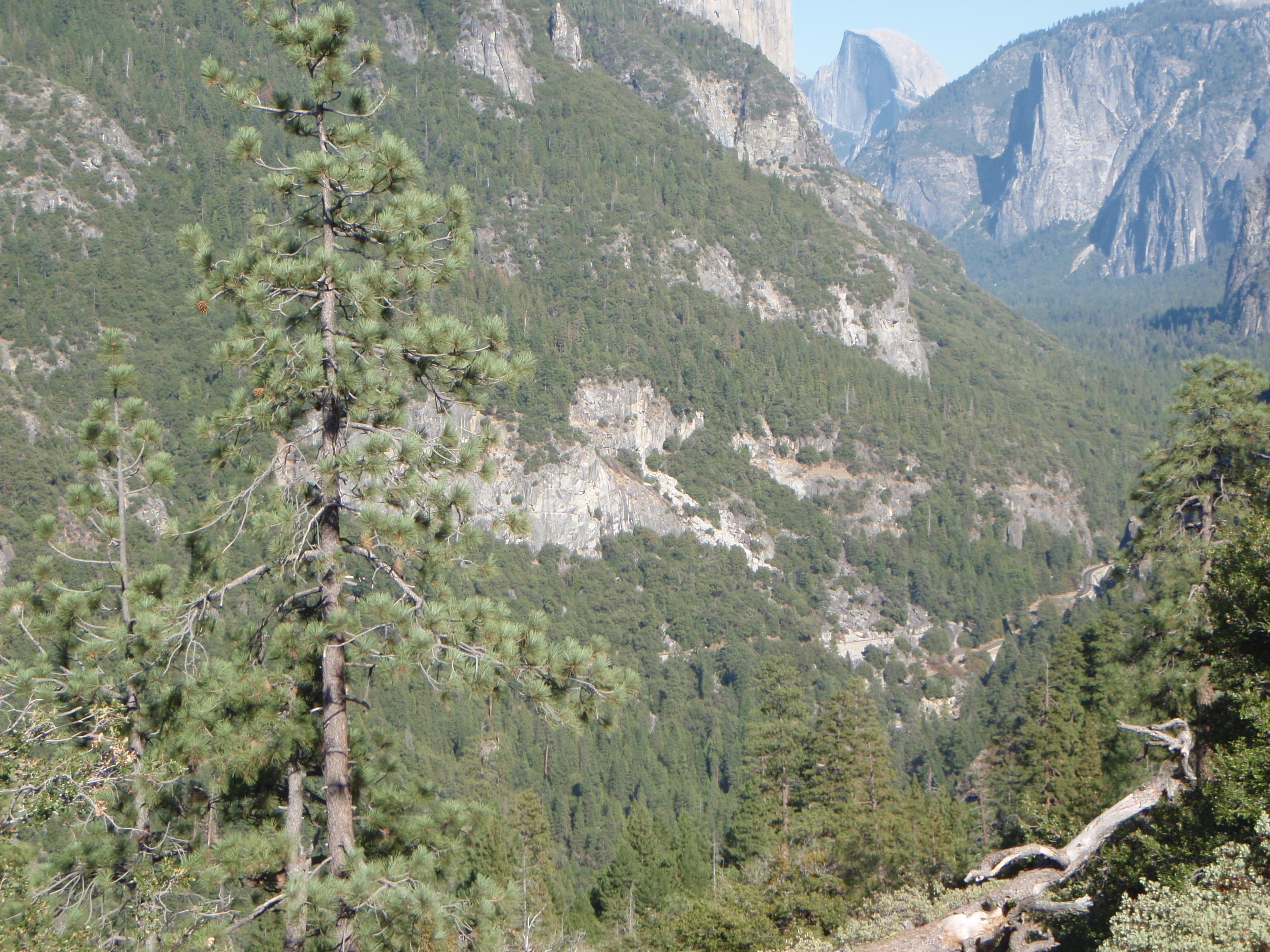 Yosemite national park photo