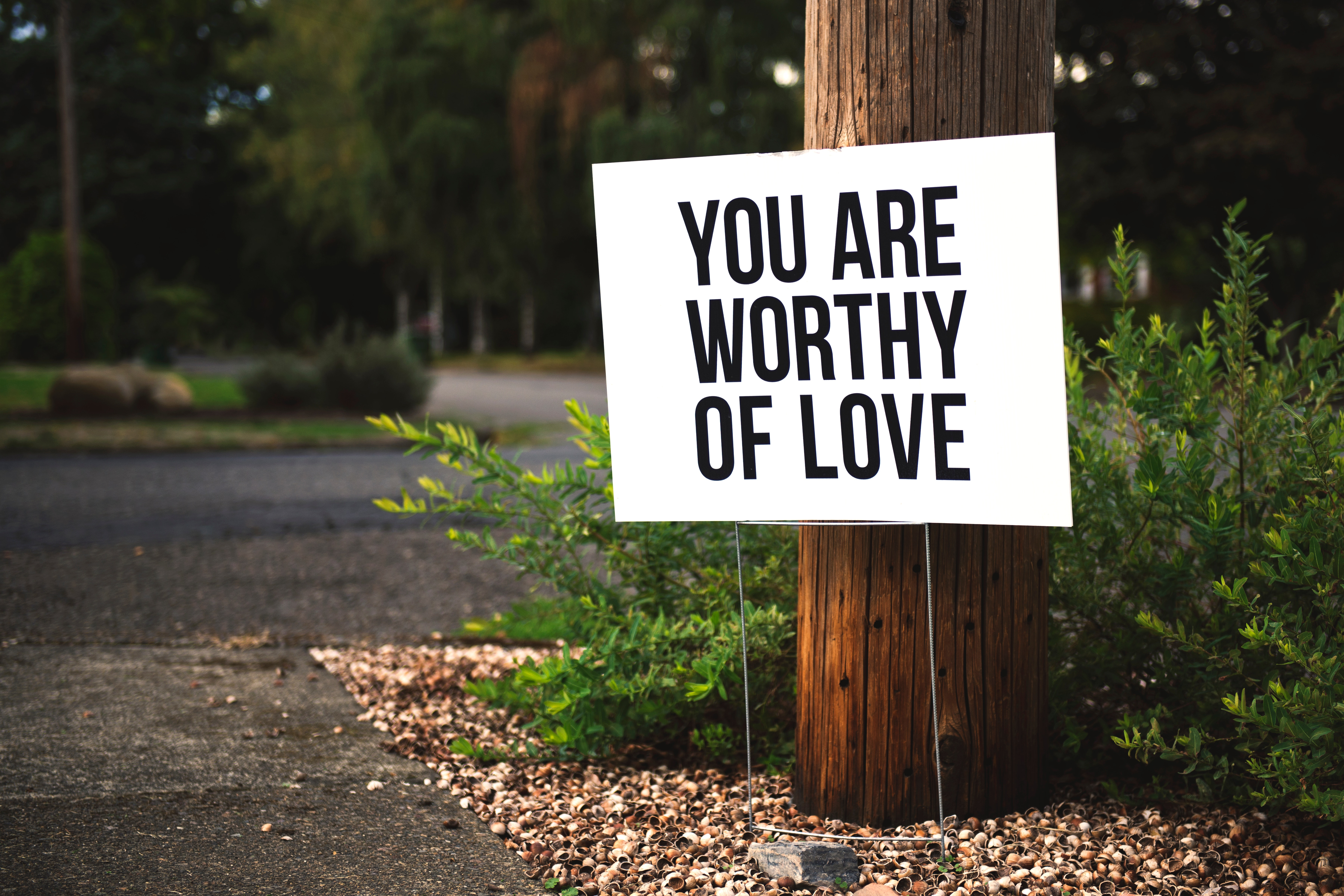 You Are Worthy of Love Signage on Brown Wooden Post Taken, Outdoors, Wood, Warning, Trees, HQ Photo