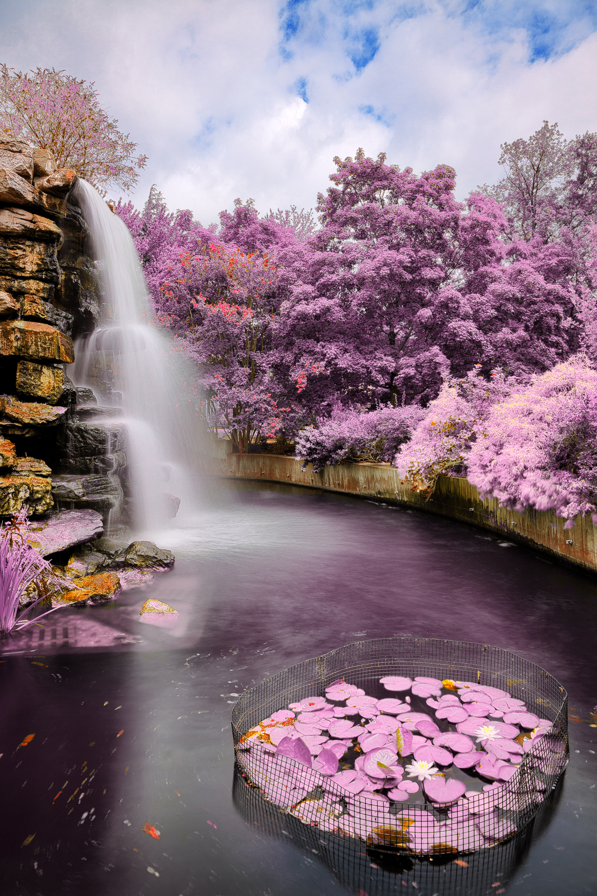 Zoo waterfall - ultra violet hdr photo