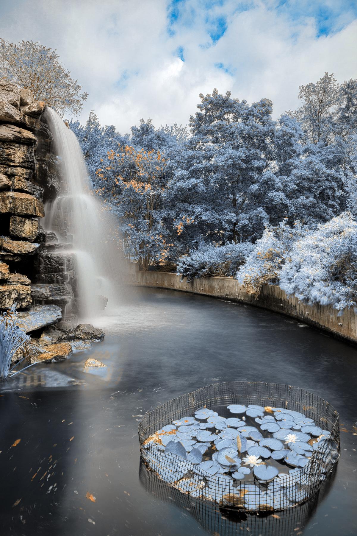 Zoo waterfall - winter blue hdr photo