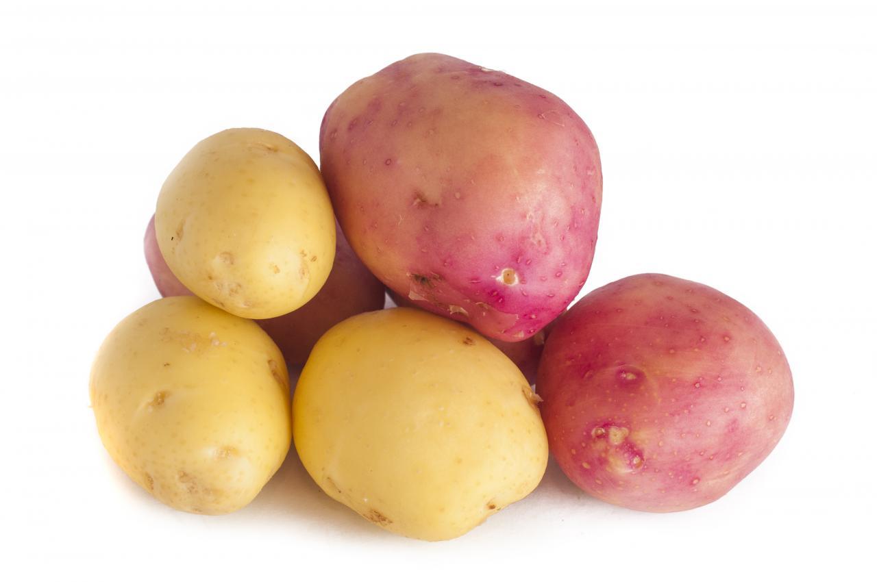 Fresh Potatoes, tuberous, vegetable, starchy, fresh, HQ Photo