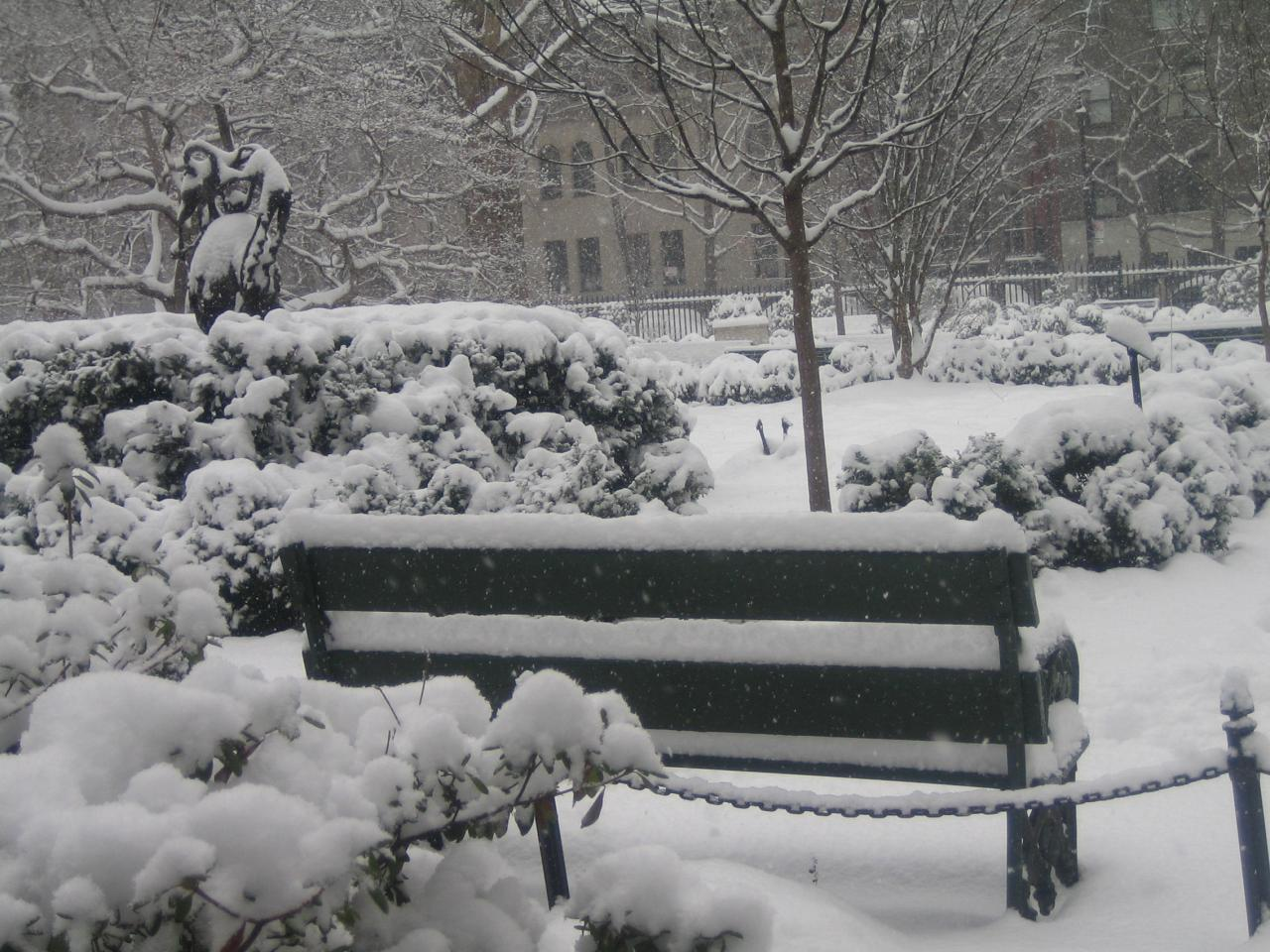Gramercy Park in the winter, snow, trees, white, winter, HQ Photo