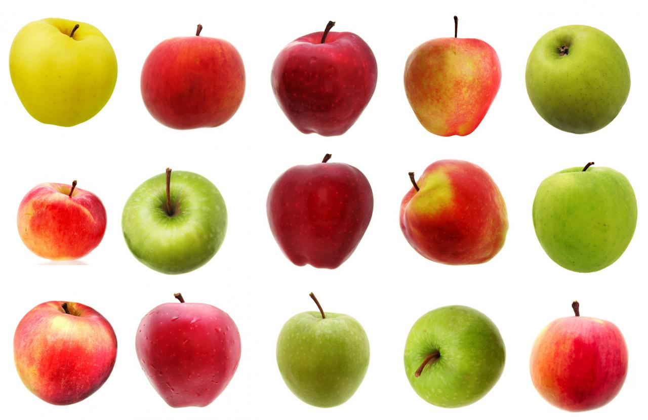 Image result for creative commons: apples
