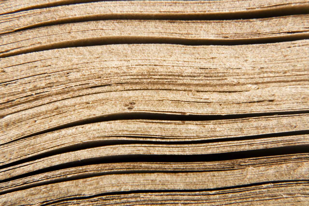 Wood background, waves, wood, tree, texture, HQ Photo