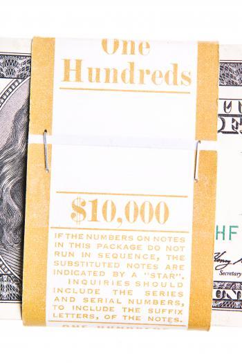 100 Dollar Bundle