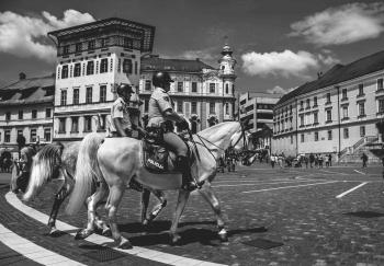 2 Man Riding a Horse in Gray Scale Photography