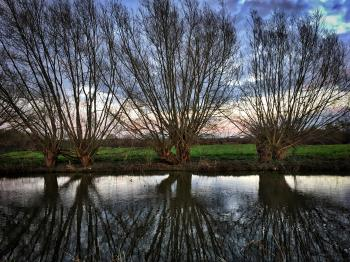 2018/365/105 Reflections on the Soar River