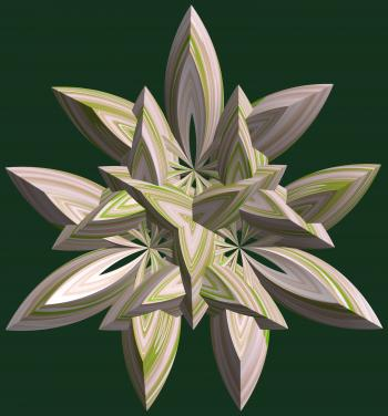 3 Crossing hexa-tori / 交差する3個の六芒星環