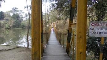 A hanging bridge