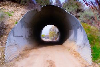 A short tunnel in the forest along the road