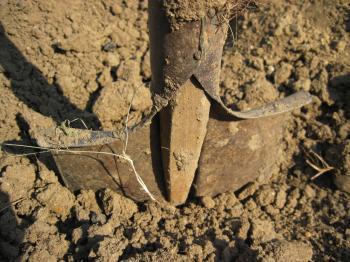 A shovel in the soil