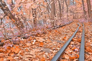 Abandoned Susquehanna Railroad - Fantasy Express HDR