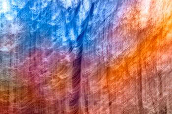 Abstract Rainbow Forest Streaks