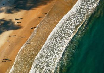 Aerial Photo of Sea Shore
