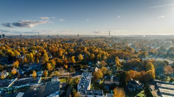 Aerial Photograph of City Buildings and Trees