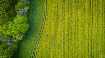 Aerial Photography of Wide Green Grass Field