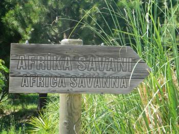 Africa Savanna Sign
