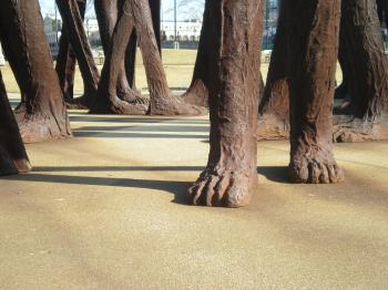 Agora (feet)
