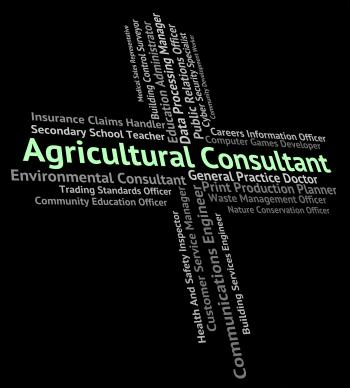 Agricultural Consultant Means Counsellor Consultation And Guide