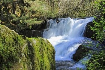 Alsea Waterfalls, Oregon