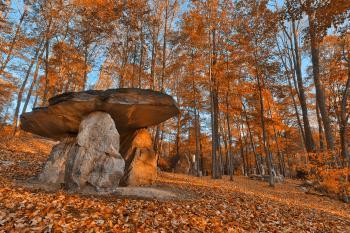 Amber Dolmen Forest - HDR