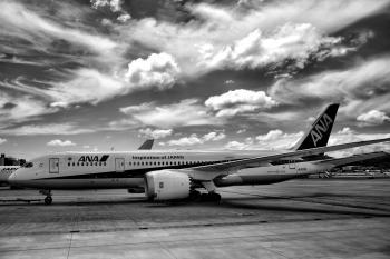 Ana Air Lines Airplane on