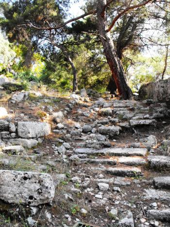 Ancient stairs in Phazelis