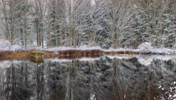 April Snow (2)