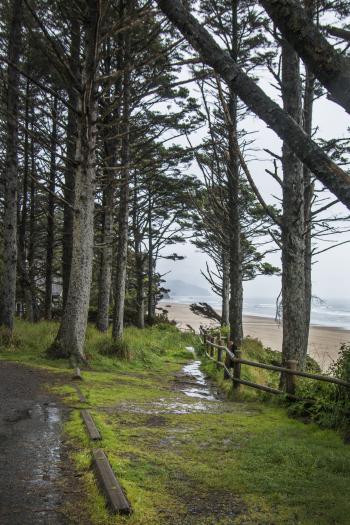 Arcadia Beach, Oregon, Path to Beach