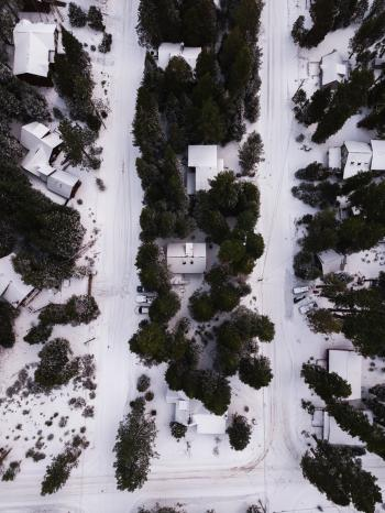 Areal Photography of Snow Covered Houses Surrounded by Green Trees