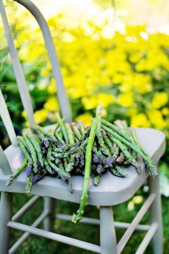 Asparagus on the Chair