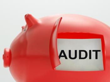 Audit Piggy Bank Means Inspection And Validation