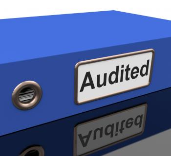Audited File Shows Business Scrutiny And Inspect