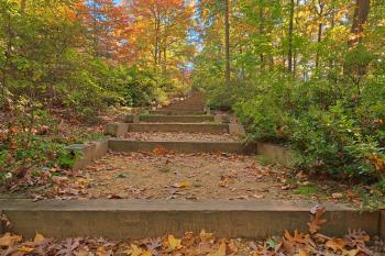 Autumn Arboretum Stairway - HDR