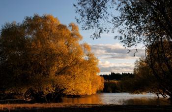 Autumn at Lake Tekapo NZ (26)
