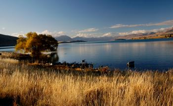 Autumn at Lake Tekapo NZ.